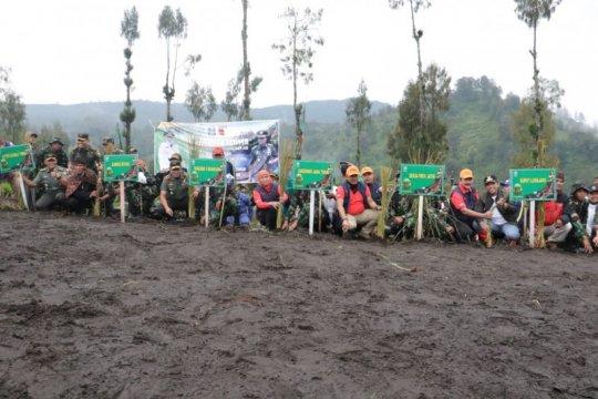 Gubernur Jatim-Pangdam tanam rumput vetiver di kaki Gunung Semeru