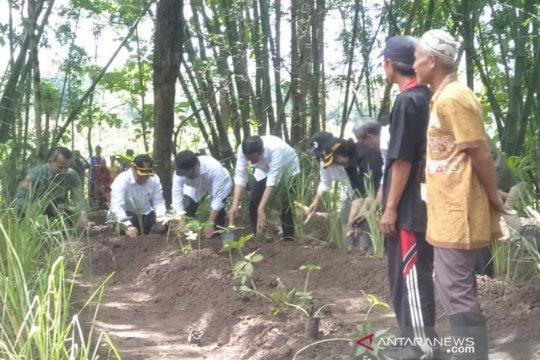 Presiden sambangi Wonogiri manfaatkan lahan kritis