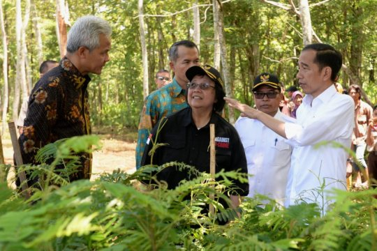 Presiden Jokowi ajak warga pulihkan daerah aliran sungai