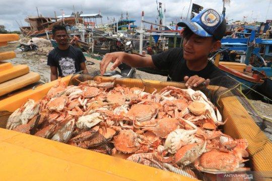 KKP ingatkan eksportir tingkatkan mutu produk perikanan