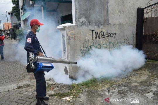 PMI Tangerang lakukan pencegahan dini penyebaran DBD dan  cikungunya