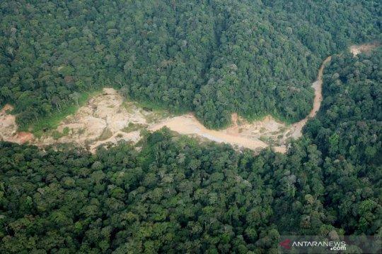 Tambang emas ilegal di kawasan hutan lindung Aceh Barat