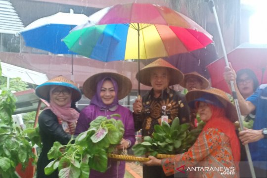 Ada lahan hijau di Kantor Wali Kota Jakarta Pusat bernama Jakpus Fam
