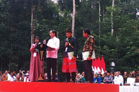Jokowi instruksikan Gubernur Riau selesaikan konflik lahan Gondai