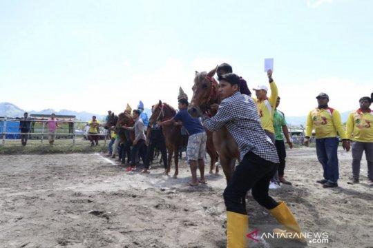 371 kuda pacu ramaikan lomba pacuan kuda, warga diimbau tak berjudi