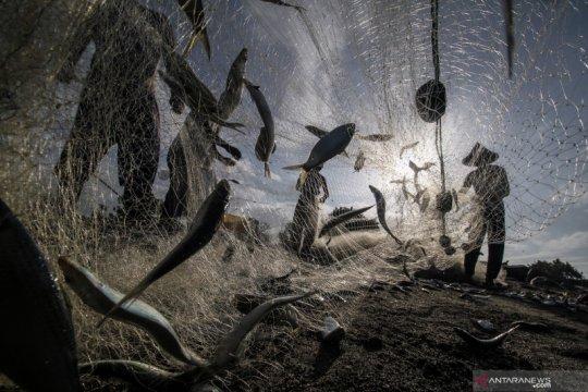 Indonesia nyatakan komitmen untuk pengelolaan laut berkelanjutan