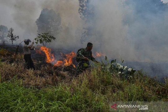 Di Riau terdeteksi 43 titik panas indikasi karhutla