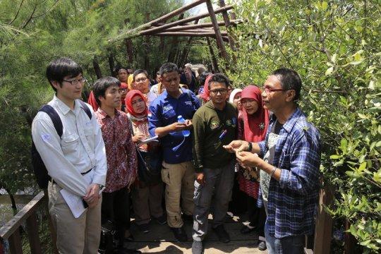 Pemkot Surabaya gandeng Kitakyushu teliti ekosistem mangrove Wonorejo