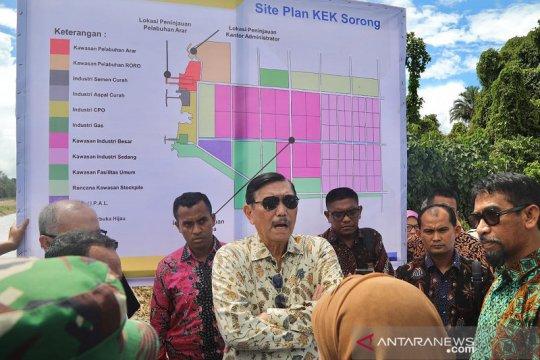 Luhut minta pembangunan smelter di KEK Sorong dipercepat