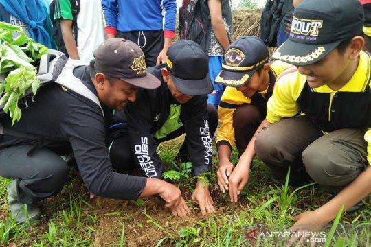 1.000 pohon ditanam alumni Universitas Bung Hatta di Bukit Raya-Riau