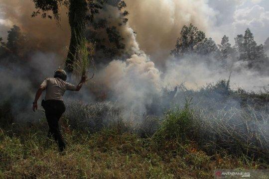 """11 titik panas Karhutla masih """"kepung"""" pesisir Riau"""