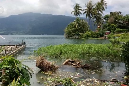 Air Danau Singkarak meluap genangi sawah dan rumah warga