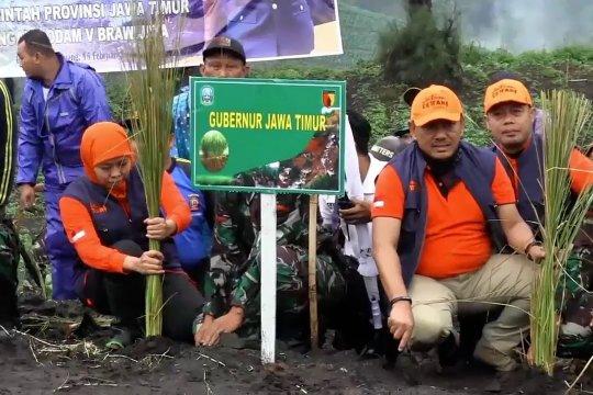 Antisipasi longsor ribuan bibit rumput vetiver ditanam di Semeru