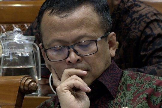 Edhy Prabowo akan rampungkan aturan penggunaan cantrang