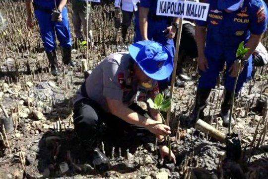 Kapolda Malut tanam 2.000 mangrove di Pantai Tidore