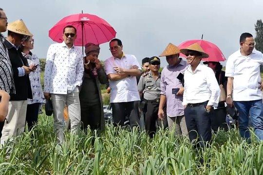 DPR RI dorong perluasan tanam bawang putih