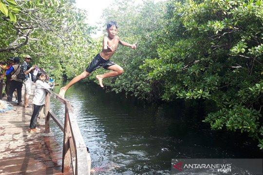 Yayasan konservasi identifikasi sebaran dan manfaat mangrove