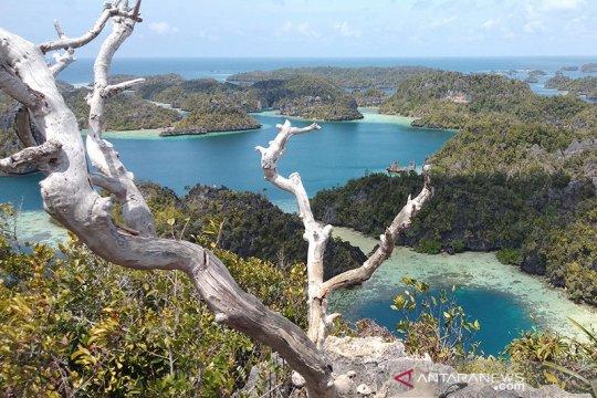 Resor asing larang operator wisata lokal kunjungi kawasan Raja Ampat