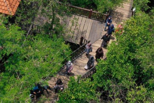 Pengunjung taman hutan raya di Surabaya dilarang bawa plastik