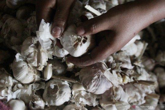 Peneliti: produksi pertanian turun, pemerintah diminta permudah impor