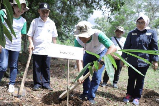 Taspen dan UGM tanam ribuan bambu di Wanagama untuk pelestarian alam