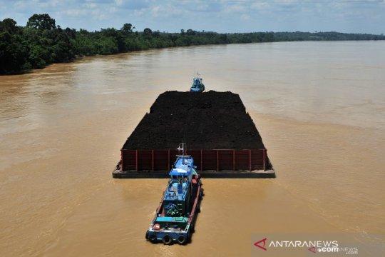 Ekspor batu bara dan cangkang sawit terhambat pendangkalan pelabuhan
