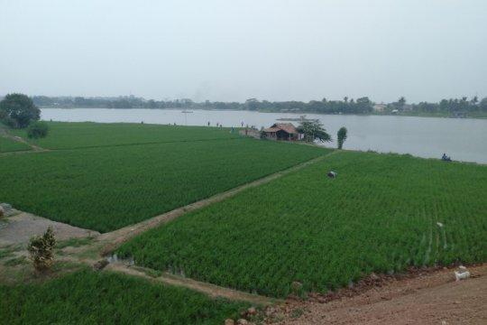Sawah banjir, Karawang ajukan permohonan bantuan ke Kementan