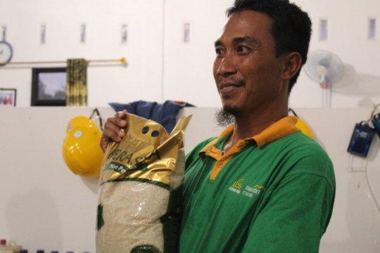 Jaga lingkungan, petani Lampung Tengah kembangkan beras sehat