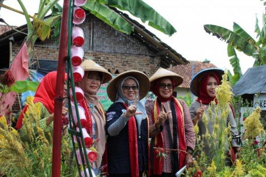 Kelompok Wanita Tani tombak pembangunan level keluarga