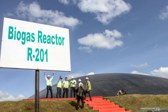 Energi baru terbarukan limbah sawit bagi mitigasi perubahan iklim