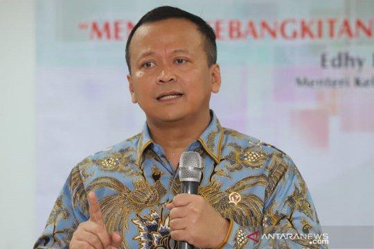 Menteri Edhy ingin pemda optimalkan program KUR-permodalan KKP