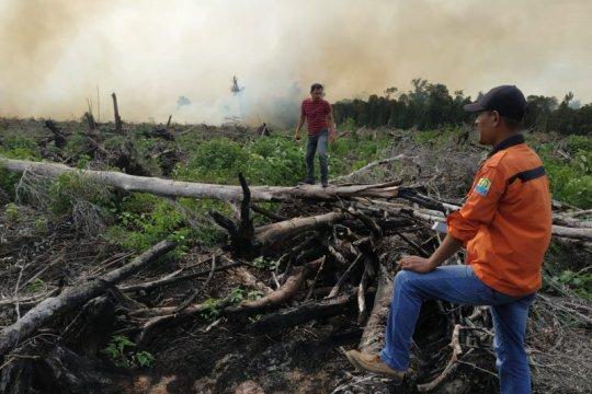 BPBA: Kebakaran lahan gambut di Aceh Jaya meluas capai 30 hektare