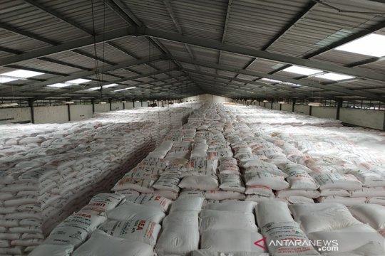 Serikat petani sebut sejumlah wilayah di Jawa mulai musim gadu