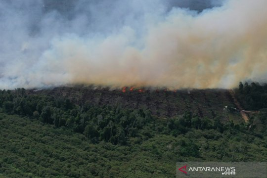 Kebakaran lahan gambut di Aceh Jaya