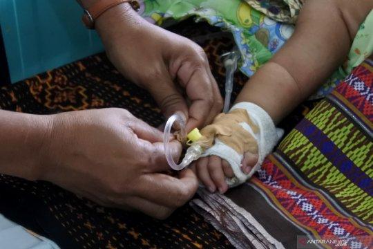 Pemkab Sikka katakan KLB demam berdarah tahun ini terparah