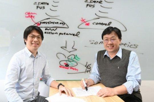 NTHU kembangkan pengobatan terbaru untuk penyakit Parkinson