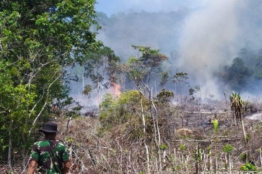 Indikasi karhutla, BMKG nyatakan 35 titik panas terpantau di Aceh