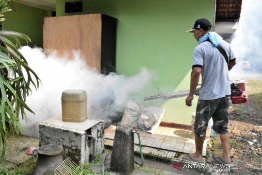 Cegah DBD dan demam dengue, jangan bosan bersihkan rumah