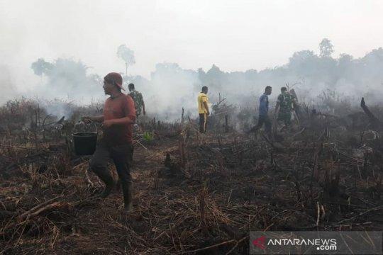 Petugas hadapi kendala padamkan kebakaran 9,5 hektare di Aceh Selatan