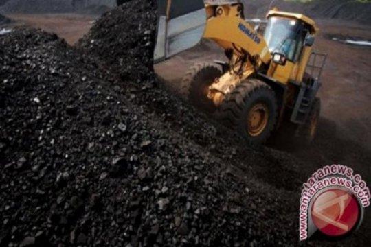 Pemerintah diminta hentikan ekspor konsentrat untuk raih nilai tambah