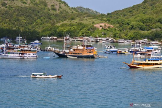 Ratusan pemandu wisata di Labuan Bajo nganggur, terdampak COVID-19