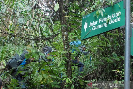 Balai besar TNGGP perpanjang penutupan pendakian Gede-Pangrango