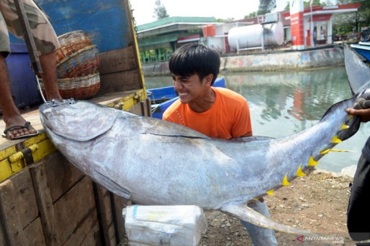 KKP: Era normal baru akan dongkrak permintaan ekspor perikanan