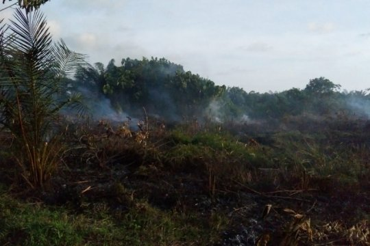 BMKG: 32 titik panas terdeteksi muncul di Aceh