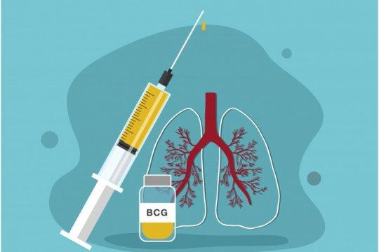 Brazil uji keampuhan vaksin BCG dalam pengobatan COVID-19