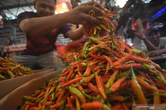 Harga cabai rawit merah di Jakarta turun jadi Rp127.000 per kg.
