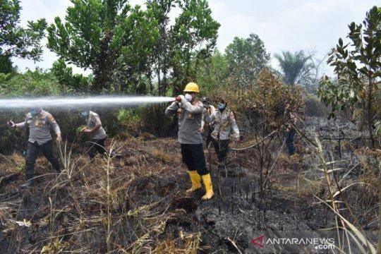 Pakar sebut karhutla berulang karena sengaja dibakar