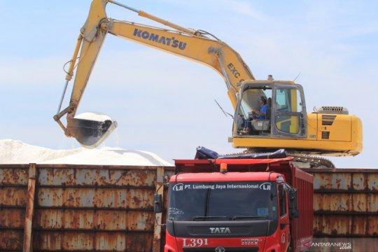 Kemenko Maritim-Investasi minta PT Garam tingkatkan produktivitas
