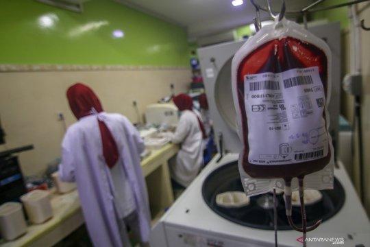 Stok darah PMI berkurang