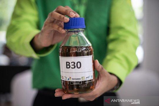 Gapki: Program B30 akan dongkrak serapan minyak sawit hingga 12 persen